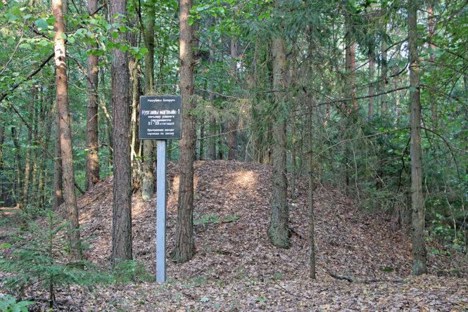 Курганный могильник вблизи деревни Ясенец